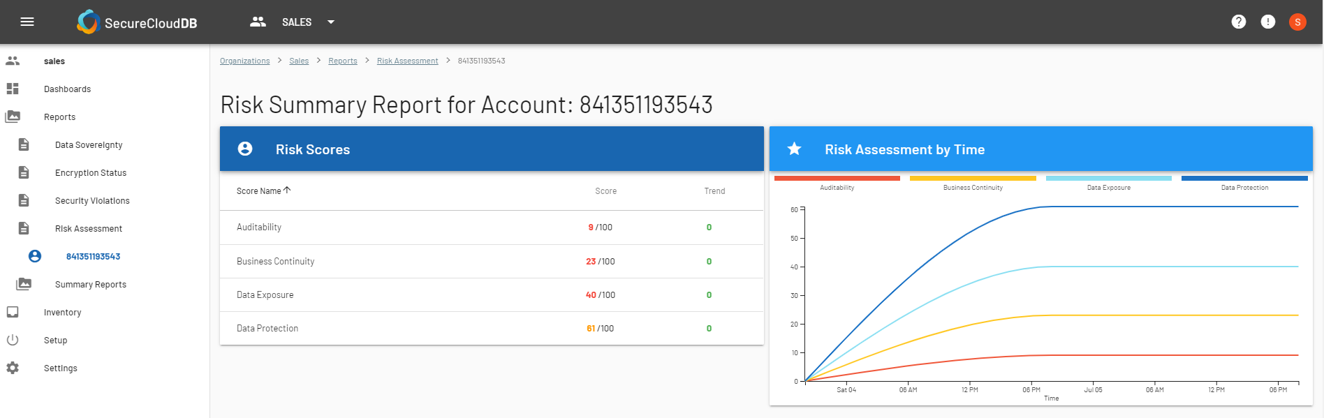 Risk Summary Report-1